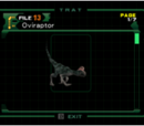 Oviraptor (file)