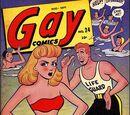 Gay Comics Vol 2 24