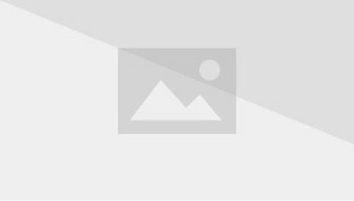 La talpa rex wiki for Cucciolo di talpa