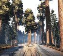 Big Timber Pass