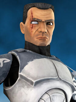 Wolffe-TCWCE