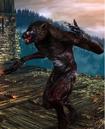Tw2 screenshot werewolf.png