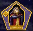 Godric Gryffondor - Chocogrenouille HP2.jpg