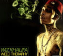 Weed Therapy (Wiz Khalifa mixtape)