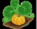 Crop Pumpkin (200).png