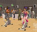 Fitness (hobby)