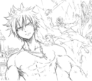Images of Gray Fullbuster