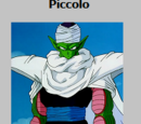 Piccolo Card