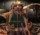 Postacie wspomniane w grach Serii Fallout