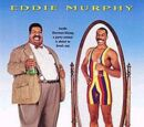 The Nutty Professor films