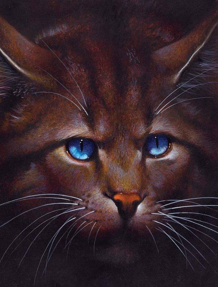 Frost Warrior Cats