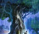 京都樹洞秘窟