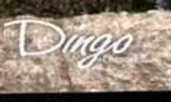 Dingo Icarly Wiki