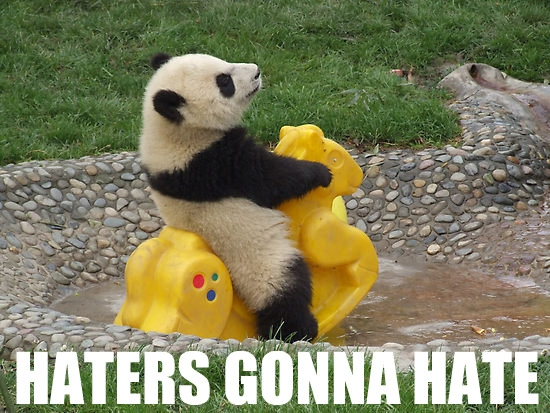 Img-haters-gonna-hate-panda-352.jpeg