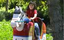 Legoland horse.png