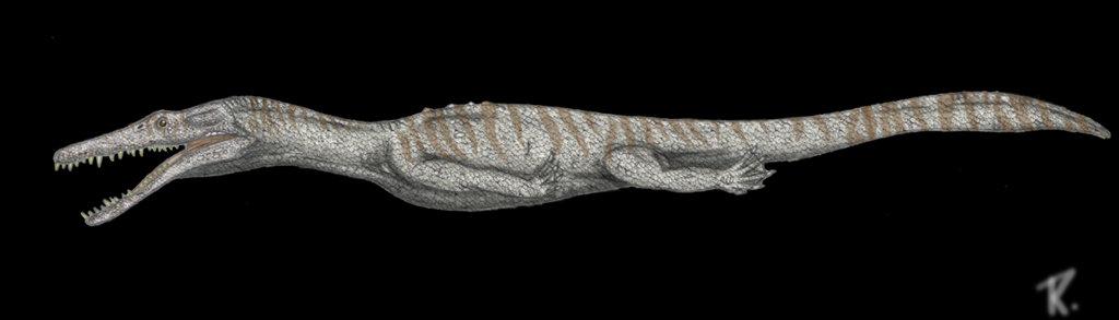 Nothosaurus_by_Rafael77.jpg