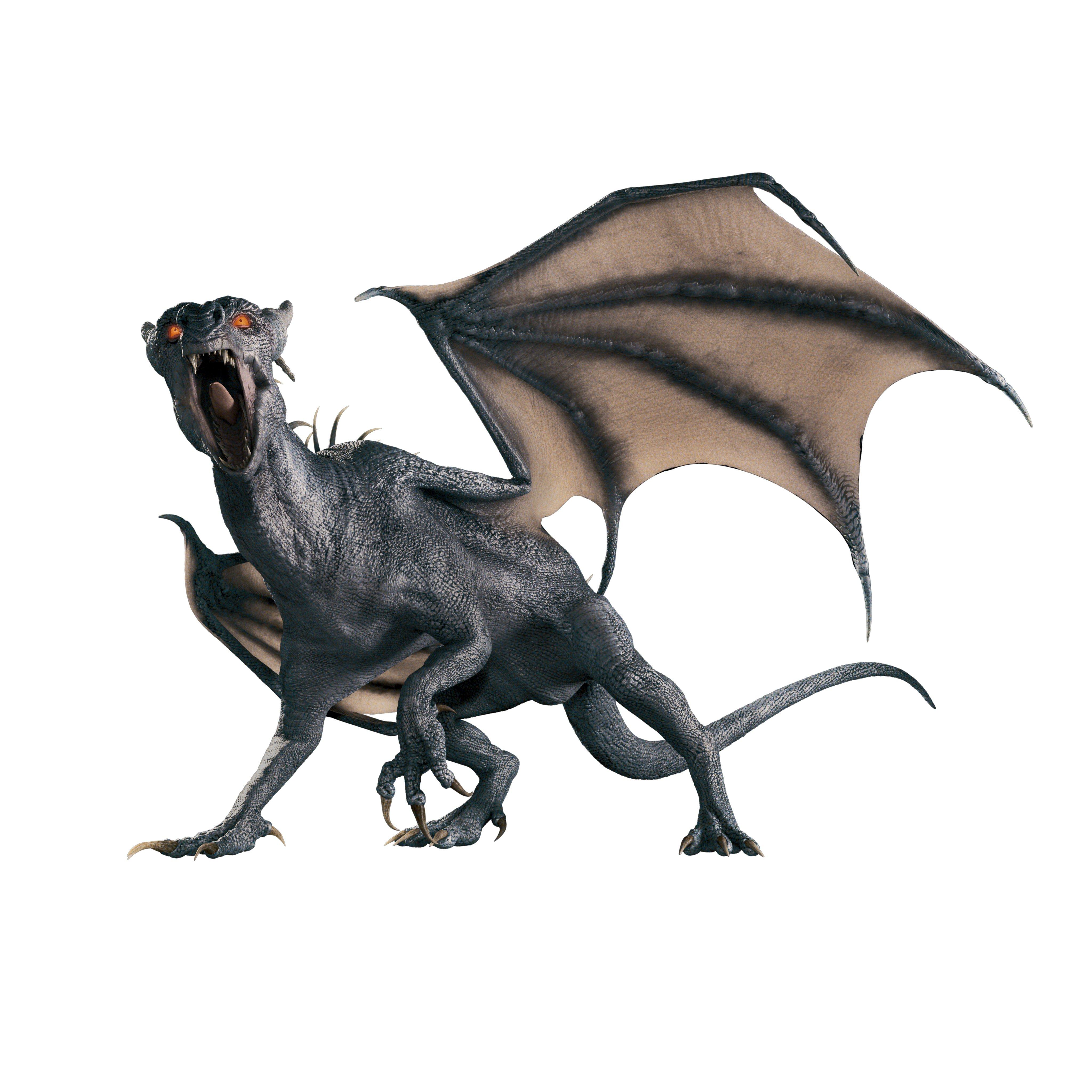 dragons world king dragon