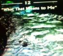 """Capítulo 12 - """"Qué significa eso para mí"""""""