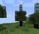 Rubber farming