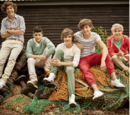 One Direction Gallery