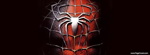 Spiderman Chest Logo.jpg