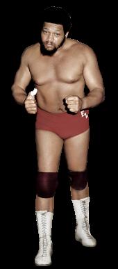 Ernie Ladd Pro Wrestling Wiki Divas Knockouts