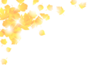 AutumnL copy.png