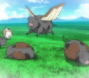 Cattle Pig Fowl