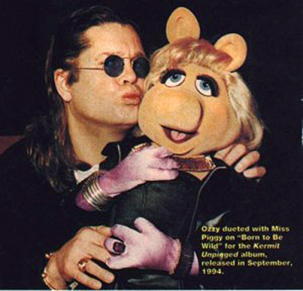 born to be wild muppet wiki wikia