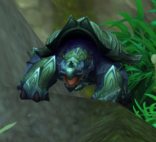 Turtle - WoWWiki - Your guide to the World of Warcraft