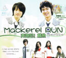 Mackerel Run
