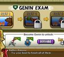 Genin Exam