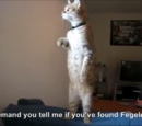 Hitler encounters the Standing Cat