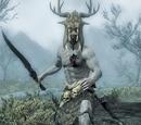 Skyrim: 種族ごとのキャラクター