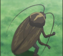 Hayate no Gotoku! Anime Episode List
