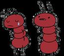 Ant (Storytelling)