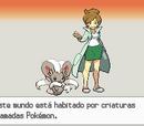 Guía de Pokémon Negro 2 y Pokémon Blanco 2