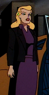 Selina Kyle in Batman The Animated SeriesBatman The Animated Series Selina Kyle