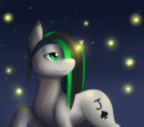 Earth Pony