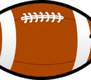 Football Bird