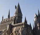 Haalyle/My Adventures Through the Harry Potter Universe