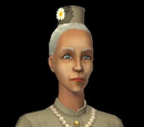 Sims from Seasons (The Sims 2)