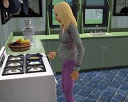 how to get pregnant in sims 3 wii