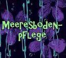 Meeresbodenpflege (Episode)
