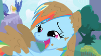 Muddy Rainbow Dash Laughing S1E01