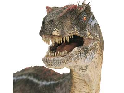 Velociraptor-head.jpg
