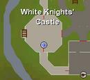 Black Knight's Fortress