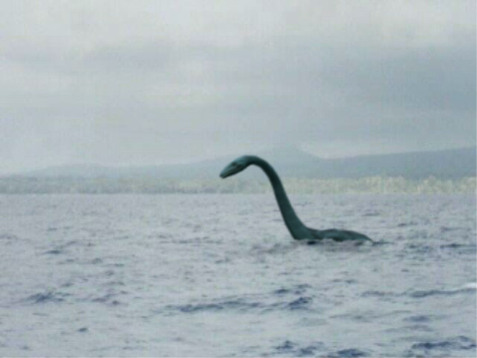 Loch Ness Monster Sightings 2014 Sea monster sightings 2014