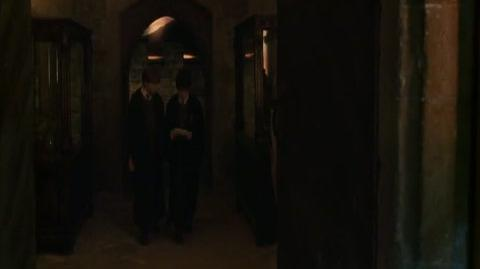 Harry Potter and the Chamber of Secrets - It's a Basilisk