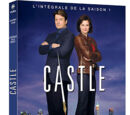 DVD Saison 1